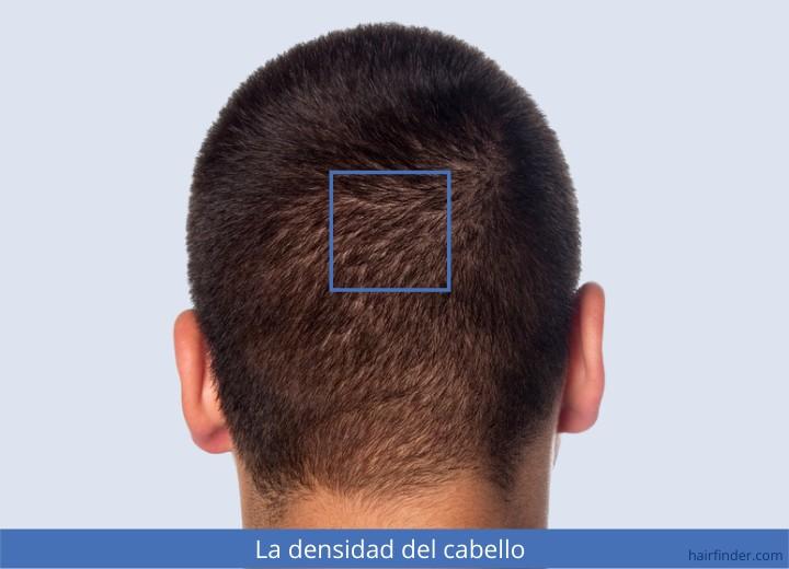 La reconstitución de los cabello de los cabellos porosos y secos